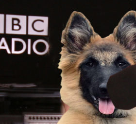 Colne Radio Eastenders dog dj
